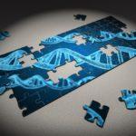 本当に危険!「遺伝子組み換え」とアレルギーの関係は証明されていた