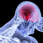 情報過多で脳は疲れていく!?~脳疲労のポイントとは?~