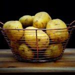 天然毒素とジャガイモ! 下処理と保存方法を間違えると・・・