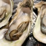 牡蠣の「生食用」と「加熱用」は海域で決まる!? 食中毒の原因は?